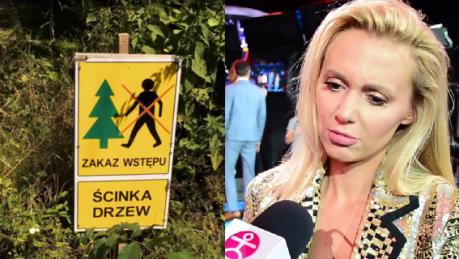 Moś broni Puszczy Białowieskiej Tu chodzi o biznes Natura sam sobie radzi