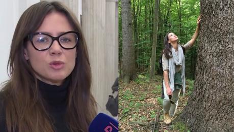 Rusin atakuje Lasy Państwowe To przedsiębiorstwo które zarabia a powinno służyć Polakom