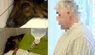 Zakopał psa żywcem bo się przeprowadzał Wyraził skruchę i… dostał tylko pół roku więzienia